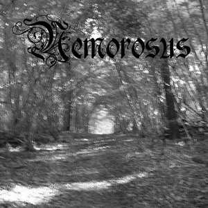 Image for 'Nemorosus'