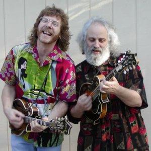 Image for 'Sam Bush & David Grisman'