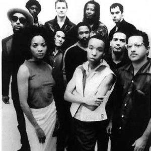 Imagem de 'Brooklyn Funk Essentials'