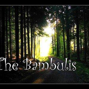 Image pour 'The Bambulis'