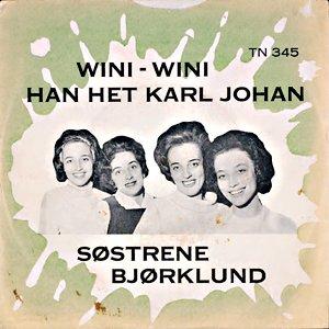 Image for 'Søstrene Bjørklund'
