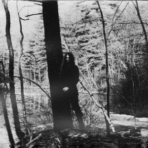 Image pour 'December Wolves'