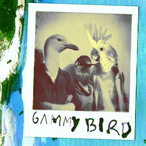 Image for 'Gammy Bird'