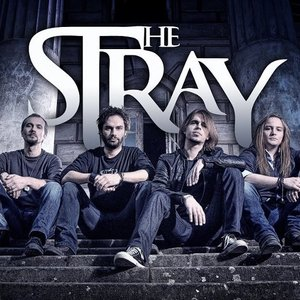 Image for 'The Stray'