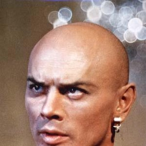 Image pour 'Yul Brynner'