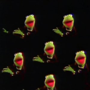 Image for 'Kermit and the Frog Chorus'