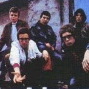 Image for 'Brunning Sunflower Blues Band'