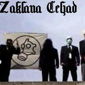 Image for 'Zaklana Čeljad'