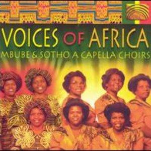 Immagine per 'Voices Of Africa'