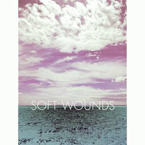 Image for 'Soft Wounds'