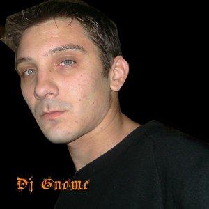 Image for 'DJ Gnome'