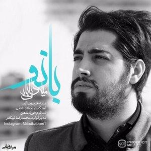 Bild für 'Milad Babaei'