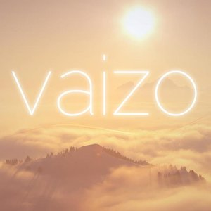 Image for 'Vaizo'