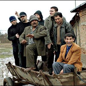 Image pour 'shukar collective'