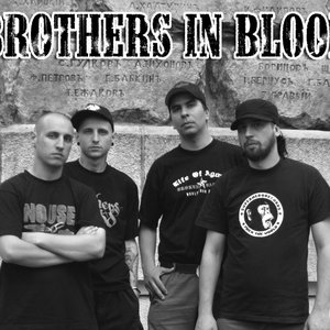 Image for 'Brothers in Blood'