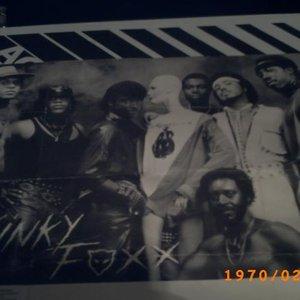 Image for 'Kinky Foxx'
