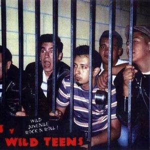 Image for 'Lil' Luis Y Los Wild Teens'