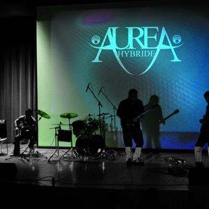 Image for 'Aurea Hybride'