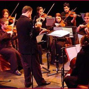 Imagen de 'The Chamber Academy Orchestra'