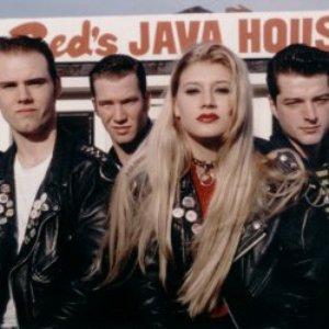 Bild för 'Teen Idols'