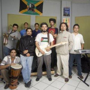 Image for 'Los Tachos'