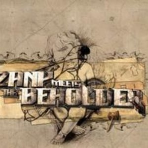 Image for 'Dj Zany meets the Beholder'