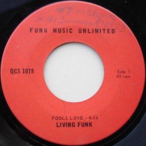 Image pour 'Living Funk'