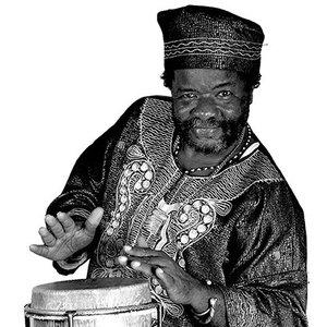 Image for 'Bongo Herman'