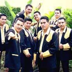 Image for 'Beto Y Sus Canarios'