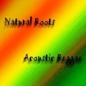 Image for 'Natural Roots'