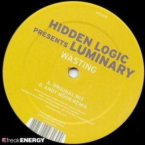 Image for 'hidden logic presents luminary'