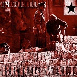 Image for 'Critikill'