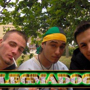 Image for 'Flegmadogs'