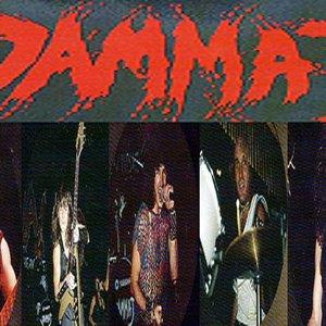 Image for 'Dammaj'