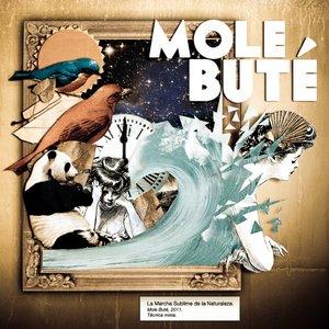Bild för 'Mole Buté'