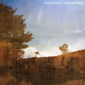 Image for 'mosaic mosaic'