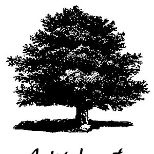 Image for 'AOKI, hayato'