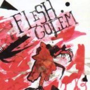 Bild für 'Flesh Golem'