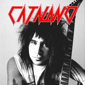 Immagine per 'Catalano'