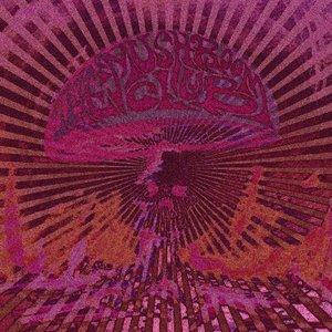 Image for 'The Mushroom Club'