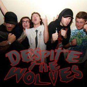 Image for 'Despite the Wolves'