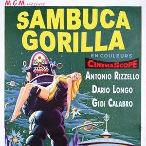 Image for 'Sambuca Gorilla'