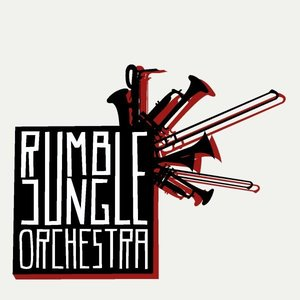 Image for 'Rumble Jungle Orchestra'