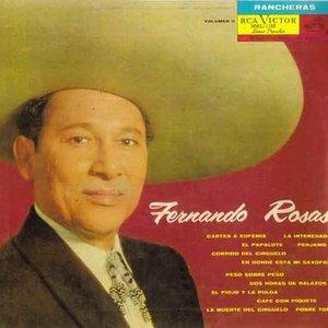 Bild für 'Fernando Rosas'