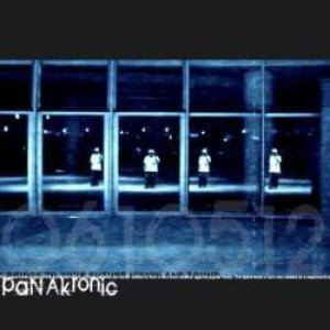 Image for 'panakronic'
