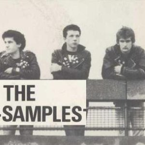 Bild för 'The Samples'