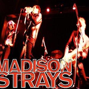 Image for 'Madison Strays'