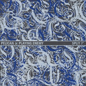 Image for 'Pelican & Playing Enemy'