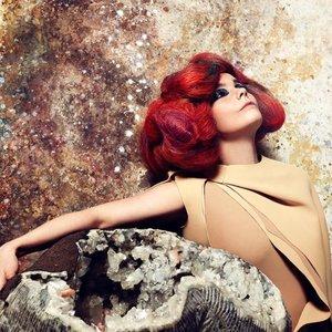 Bild för 'Björk'