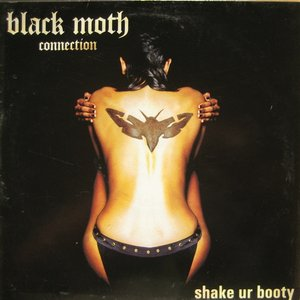 Image for 'Black Moth Connection'